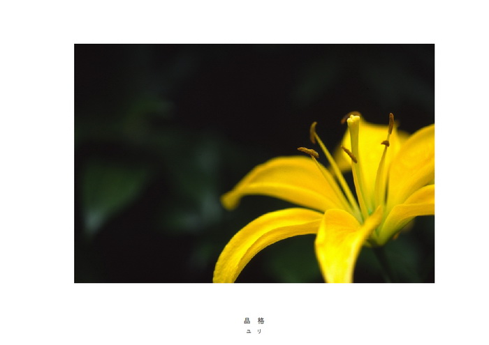 18 品格.jpg