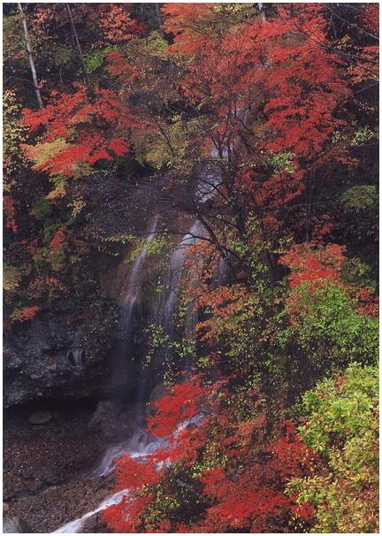 22 渓谷の秋彩.jpg